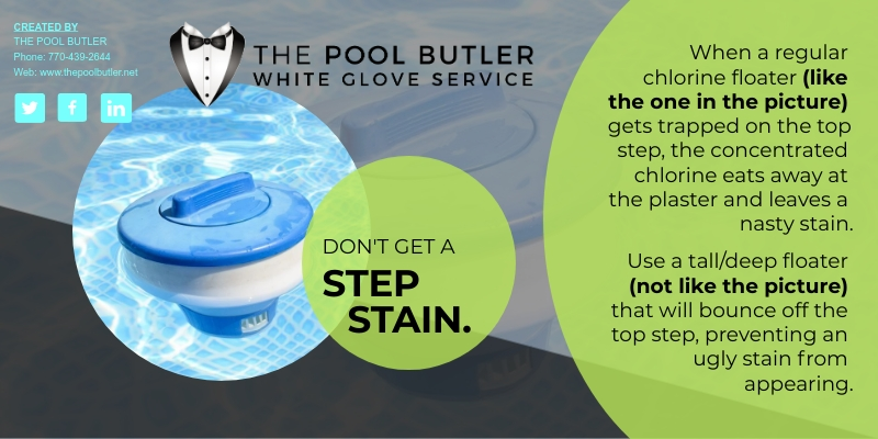 The Most Annoying Swimming Pool Stain (And How To Prevent It) [infographic]
