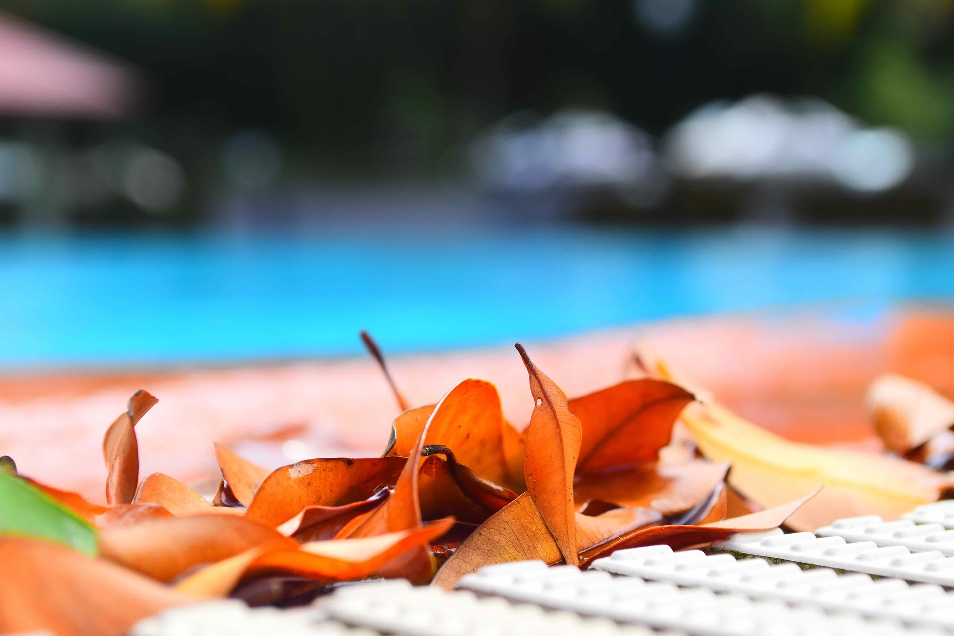 How to Maintain Your Pool Quickly and Easily
