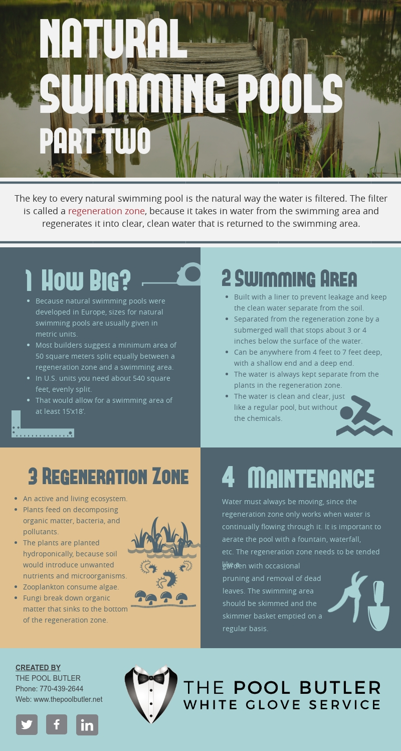 Natural Swimming Pools - Part Two [infographic]