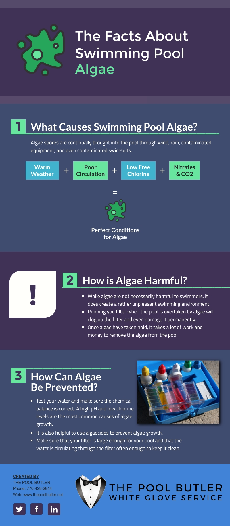 The Facts About Swimming Pool Algae [infographic]