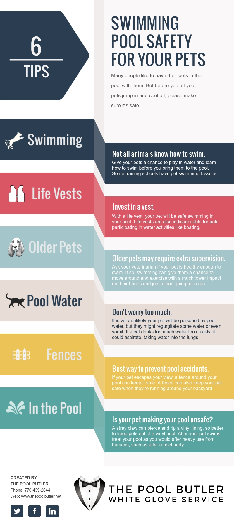 Swimming Pool Safety For Your Pets [infographic]