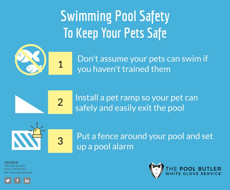 Why Swimming Pool Safety Is Important For Your Pets [infographic]